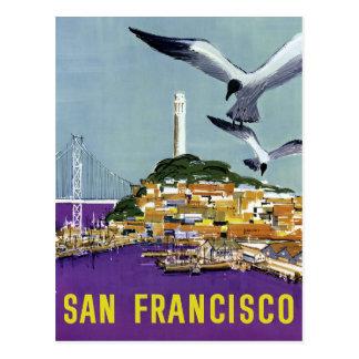 Vintage San Francisco Sea Gulls Travel Postcard