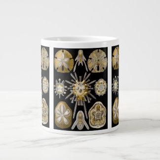 Vintage Sand Dollars Sea Urchins by Ernst Haeckel Large Coffee Mug