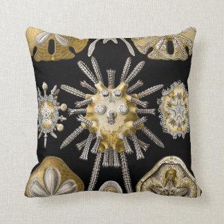 Vintage Sand Dollars Sea Urchins by Ernst Haeckel Throw Pillow
