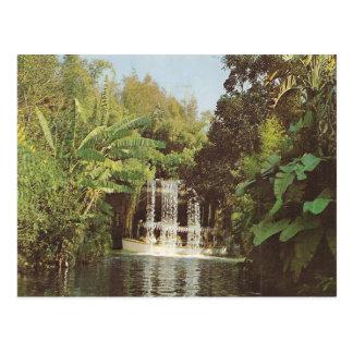 Vintage Schweitzer Falls Postcard