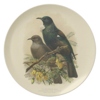 Vintage Science NZ Birds - Tui Melamine Plate