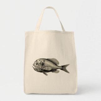 Vintage Science NZ Fish - Orange Roughy