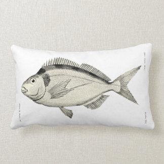 Vintage Science NZ Fish - Tarakihi Lumbar Pillow