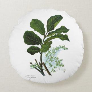 Vintage Science NZ Flowers - Kohe Kohe Round Pillow