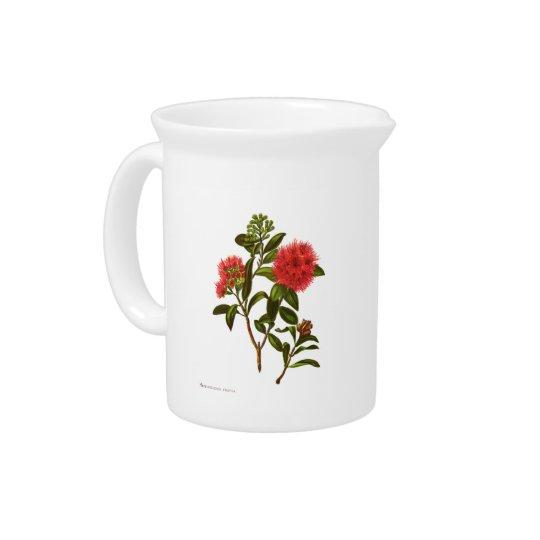 Vintage Science NZ Flowers - Meterosideros florida Pitchers