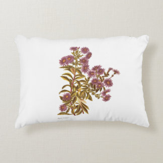 Vintage Science NZ Flowers - Olearia semidentata Accent Pillow