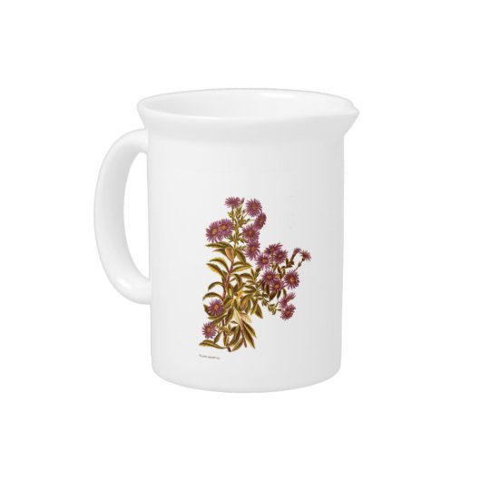 Vintage Science NZ Flowers - Olearia semidentata Beverage Pitchers