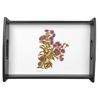 Vintage Science NZ Flowers - Olearia semidentata Serving Tray