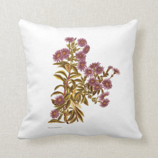 Vintage Science NZ Flowers - Olearia semidentata Throw Pillow