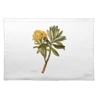 Vintage Science NZ Flowers - Senecio huntii Placemat