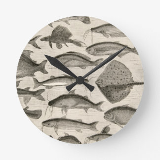 Vintage Scientific Fish Swimming Amazon River Fins Wall Clocks