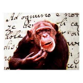vintage scripts funny Chimpanzee Postcard