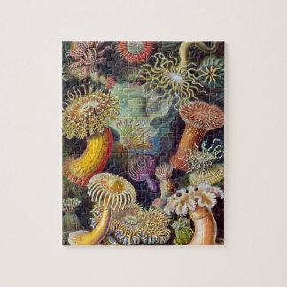 Vintage Sea Anemones, Actiniae by Ernst Haeckel Jigsaw Puzzle