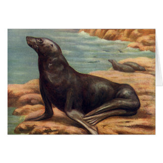 Vintage Sea Lion by the Seashore, Marine Mammal Greeting Card
