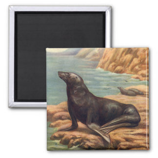 Vintage Sea Lion by the Seashore, Marine Mammal Square Magnet