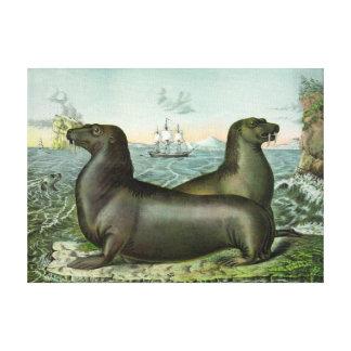 """Vintage Sea Lions Marine Illustration 18X13"""" Canvas Print"""