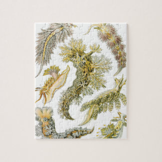 Vintage Sea Slugs and Snails by Ernst Haeckel Jigsaw Puzzle