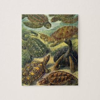 Vintage Sea Turtles and Tortoises by Ernst Haeckel Puzzles