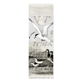 Vintage Seagulls Customized Retro Seagull Template Pack Of Skinny Business Cards