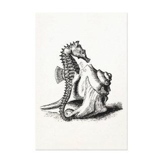 Vintage Seahorse Sea Horse Trumpet Shell Beach Canvas Print