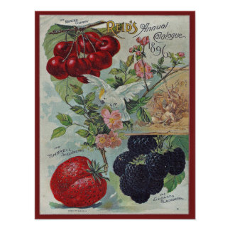 vintage seed catalogue cover poster