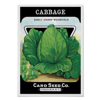Vintage Seed Packet Label Art, Green Cabbage Poster