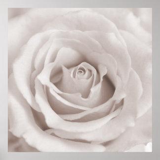 Vintage Sepia White & Cream Rose Background Custom Poster