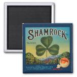 Vintage Shamrock Orange Magnetic Refrigerator Magnets