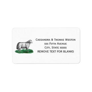 Vintage Sheep Ewe Farm Animals Drawing C Label