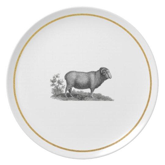 Vintage Sheep Illustration w Faux Gold Foil Effect Plate