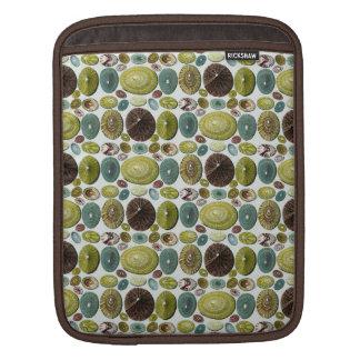 Vintage Shells iPad Sleeves