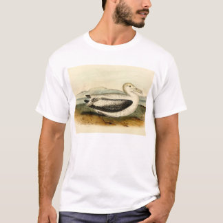 Vintage Short Tailed Albatross Bird T-Shirt