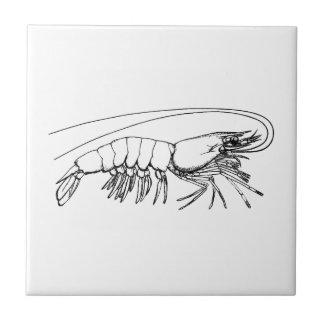 Vintage Shrimp Tile