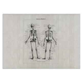 Vintage Skeleton Human Anatomy Bone Bones Skull Cutting Board
