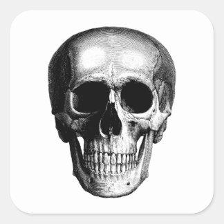 Vintage Skull Art Square Sticker