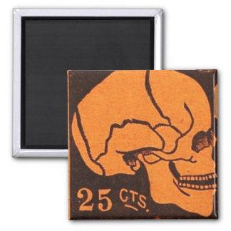Vintage Skull Medicine Advertisement Magnet