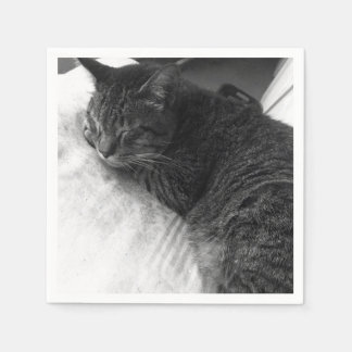 Vintage Sleeping Cat Photo   Napkin