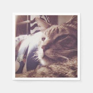 Vintage Sleepy Cat Photo   Napkin