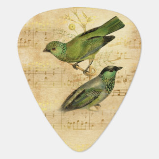 Vintage Song Bird Green Gold Music Notes Guitar Pick