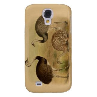 Vintage South American Rhea Birds