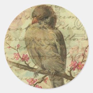 Vintage Sparrow Classic Round Sticker