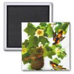 Vintage Spring Day Birds & Flowers Square Magnet