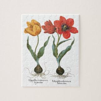 Vintage Spring Tulip Flowers by Basilius Besler Jigsaw Puzzle