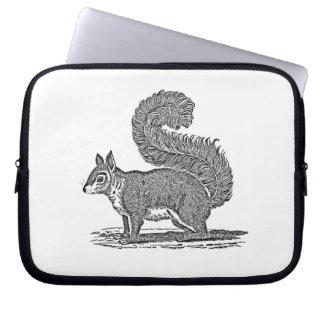 Vintage Squirrel Illustration -1800's Squirrels Laptop Sleeve