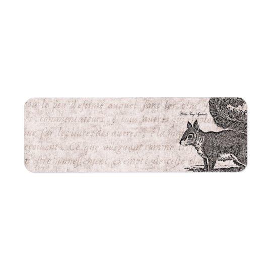 Vintage Squirrel Illustration - 1800's Squirrels Return Address Label