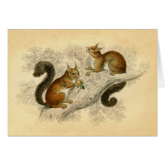 Vintage Squirrel Print Card