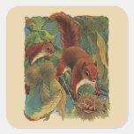 Vintage Squirrels, Forest Creatures, Wild Animals Square Sticker