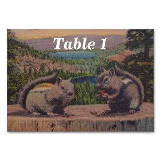 Vintage Squirrels Mountain Scene Card
