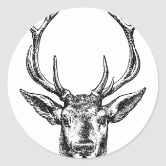 Vintage Stag or Deer Head with Antlers Classic Round Sticker