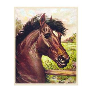 VINTAGE STALLION HORSE PORTRAIT. STRONG HORSE FACE CANVAS PRINT